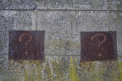 Cuestiones en la pared